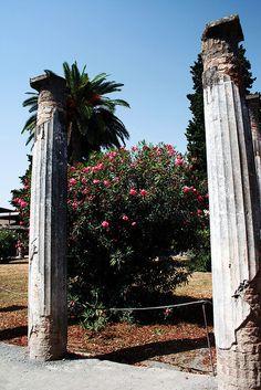 Pompeii - House of the Faun