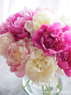 Peony,Miyabi Flowers & Decor,芍薬 , お花 ,