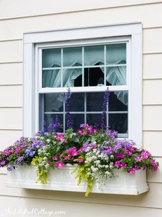 house flower boxes 144044888068151624 - 5 Tips for Gorgeous Window Boxes – The Lilypad Cottage Source by luciewanders Window Box Plants, Window Box Flowers, Window Planter Boxes, Planter Ideas, Window Boxes Summer, Balcony Flower Box, Container Flowers, Container Plants, Container Gardening