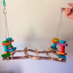 Hanging Mesquite Play gym 20 inches x 10 inches - Fun and different use of a ladder