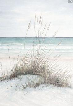 Beach #Avalon #Bilgola #Newport #Whalebeach #Palmbeach