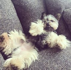 Paint me like one of your French girls. http://ift.tt/2sa1JtI