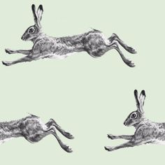 running hare template - Google Search