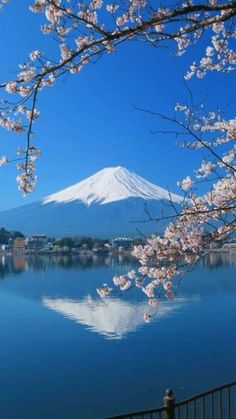 the view of home from my parents house! Monte Fuji Japon, Fuji Mountain, Mont Fuji, Japanese Landscape, Nature Pictures, Japan Travel, Amazing Nature, Beautiful Landscapes, The Great Outdoors