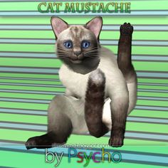 simfully:  Download by Psycho I don't know about you, but it bugs me that the cats don't have whiskers… or a moustache… XD So this is very much appreciated! I had to share it. | OMG I never noticed the cats in PETS don't have any whiskers! :O