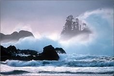 Tofino is a family-friendly, beach-combing paradise destination for winter or summer travel. Discover the wild west coast and Tofino with kids. Best Places To Travel, Great Places, Places To Visit, Sunshine Coast, West Coast Canada, Tofino Bc, Canadian Travel, O Canada, Victoria
