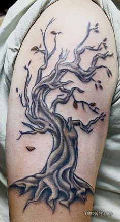 Check out this great Tattoo Designs - http://tattoo-w30589ys.trustedreviewsforyou.com