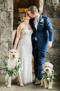 Adorable puppiues always seem to steal the show! Rosebud Ranch Wedding in Old Snowmass, Colorado