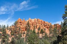Pillars and Ridges at Red Canyon by John M Bailey. This hill top at Red Canyon, Utah, shows a number of interesting formations wrought over time by erosion. #Utah #explore #traveling #nationalparks Light Photography, Travel Photography, Show Photos, Great Shots, The World's Greatest, Beautiful Landscapes, Monument Valley, Fine Art America, Photo Art