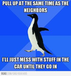 Socially Awkward Penguin is me!