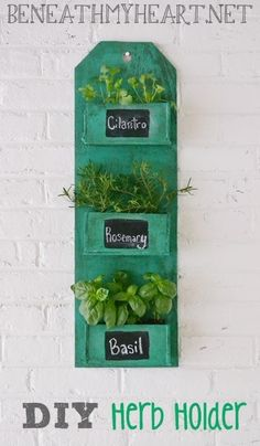 Herb holder!  Super cute and easy to make. Would be great hanging (maybe using a removable hook so it doesn't damage the cabinets) by a kitchen sink