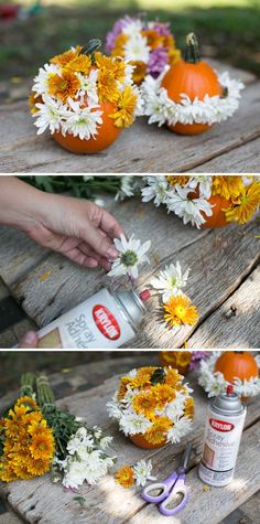 3 DIY No Carve Pumpkins (Yay for Sprinkles!)   http://hellonatural.co/diy-no-carve-pumpkins/