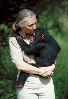 Jane Goodall and chimpanzee