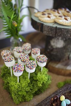 cover foamblocks in fake moss to make cake pop holders