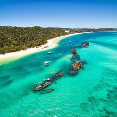A number of sunken ships at moreton island off the coast of brisbane in queensland, Queensland Australia, Australia Travel, Brisbane Queensland, Mykonos, Villas, Island Resort, India Travel, Places Around The World, Diving