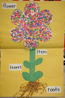 Lees Kindergarten: cute spring and plant unit would go along with an activity about how flowers grow. Also, this matches a book that was added in on our Unit plan already. Art and science activity! Preschool Projects, Classroom Crafts, Preschool Crafts, Crafts For Kids, Classroom Ideas, Art Projects, Spring Theme, Spring Art, Spring Crafts