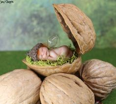 Miniature Polymer Clay Fairy Baby in Walnut Shell by Teensyweensybaby - Polymer Crafts Polymer Clay Fairy, Polymer Clay Dolls, Polymer Clay Miniatures, Polymer Clay Projects, Polymer Clay Creations, Walnut Shell Crafts, Minis, Clay Fairies, Fairy Crafts