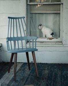 Kartell Comback Chair by Patricia Urquiola. For SR Hughes Patricia Urquiola, Outdoor Furniture, Outdoor Decor, Modern Design, Interior Design, Spring 2015, Chair, Modern Classic, Luxury