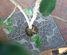 iron-age-design-decorative-drain-grate