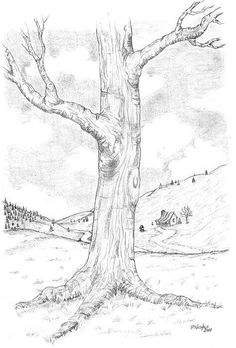 Tree Drawing & Painting Ideas Need some art inspiration? Here's a list of over 20 tree drawing and painting ideas. Why not check out this Art Drawing Set Artist Sketch Kit, perfect for practising your art skills. Tree Drawings Pencil, Pencil Drawing Tutorials, Drawing Ideas, Drawing Tips, Pencil Sketching, Drawings Of Trees, Tree Pencil Sketch, Trees Drawing Tutorial, Pencil Drawings For Beginners