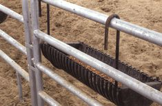 Dairy cuts plastic culvert pipe in half lengthwise and cut half circles of plywood for the ends to made homemade grain feeder Cow Feeder, Sheep Feeders, Horse Feeder, Cattle Farming, Goat Farming, Livestock, Cattle Corrals, Goat Barn, Future Farms