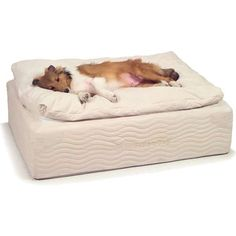 SSS PetCare™ Pillow Top Coil Spring Bed - Orthopedic Dog Beds - Photo