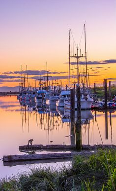 Steveston, Richmond - I love this little town Beautiful World, Beautiful Places, Beautiful Scenery, West Coast Canada, Places To Travel, Places To Visit, Minions, Places Of Interest, Canada Travel