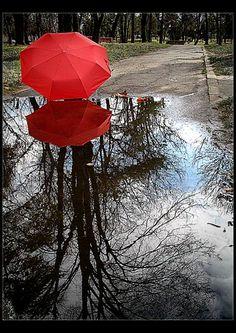 The Red Umbrella Diaries V By: Nadia Neagu