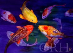 """Limited Edition Watercolor Print """"KOI FRIENDS"""""""