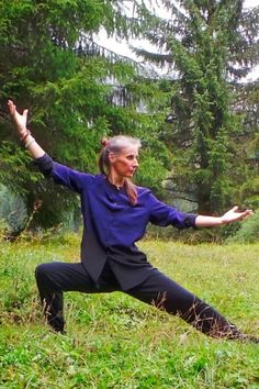Ma séance de Qi Gong, les 15 postures clés Tai Chi Exercise, Tai Chi Qigong, Meditation Exercises, Mudras, Yoga Gym, Shoulder Workout, Poses, Chinese Medicine, Martial Arts
