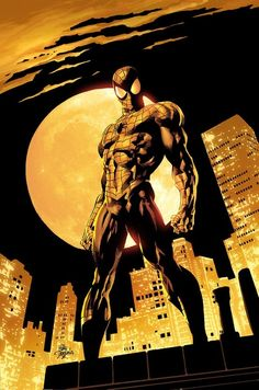 Spider Man by Mike Deodato Jr