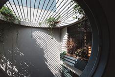 Gallery of Jungalow House / Neogenesis+Studi0261 - 14