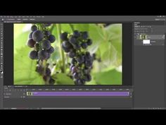 Remove noise from video in Adobe Camera RAW