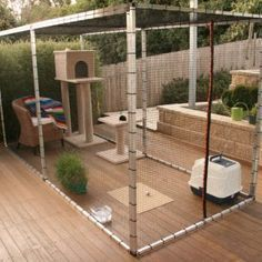 Aside from training your cat to walk on a harness, what else can you do to allow them to be outdoors but safe at the same time? Have you considered an outdoor cat cage? #catsdiyscratchingpost