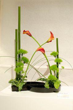 Ikebana - Catherine Meuwli | Flickr - Photo Sharing!