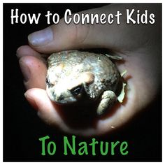 Ideas for Connecting Kids to Nature