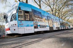NetCologne knackt 25.000 Kilometer-Glasfaser-Marke: KVB-Straßenbahnen… #Reise_Verkehr #Stadtgespräch #Wirtschaft_Recht #Ausbau #Ausleihen