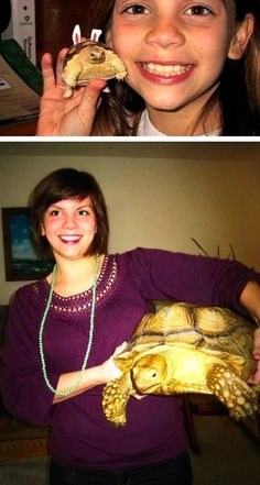 One day..this will be me. I shall have a little turtle till he grows to be the size of my dresser c: