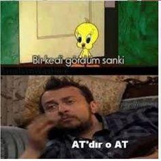 Devamı için takip edin lütfen @komikmiyimlanben @komikmiyimlanben @komikmiyimlanben . . . #komik #komedi #mizah #caps #kedi #takip #takipetakip  #eğlence #eglence #karikatür  #istanbul  #dizireplikleri #gül #gülmek #gülümse #türkiye #mutluluk #fotoğraf #beğen #karikatur #iyigeceler #günaydın #dizi #film #moda #kadin  #güzel #izmir #ankara #aşk http://turkrazzi.com/ipost/1515290898945863598/?code=BUHZQtTDO-u
