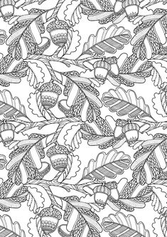 Leaves and Acorns Coloring Page