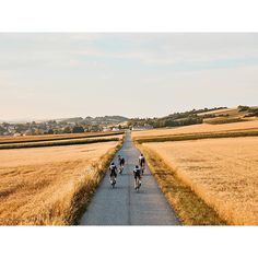 roads of manhartsbrunn, lower austria. #bbuc #outdoordisco #cycling