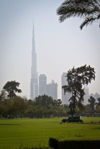 Al safa park in Dubai; form a post about the savanna hypothesis in the environmental psychology