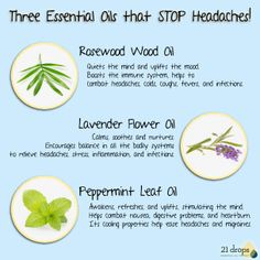 stop headaches with 3 Essential Oils Essential Oils For Pain, Essential Oil Uses, Rosewood Essential Oil, How To Relieve Headaches, Flower Oil, Young Living Oils, Homeopathy, Natural Healing, Wine Recipes