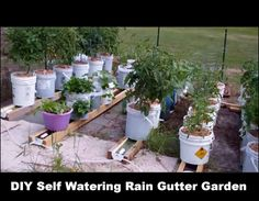 Inside Urban Green Sips Rain Gutter System Gutter