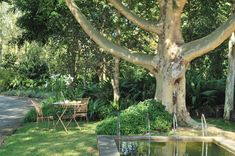Hippo Hollow Country Estate | Specials 4 Africa