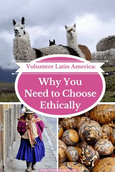 Volunteer Latin America and Why You Need to Volunteer Ethically Volunteer Abroad Free Programs Travel Volunteer Programs, Volunteer Abroad, South America Travel, North America, Responsible Travel, Travel Tours, Travel Destinations, Humor, Central America