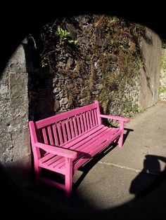 The Story of The  Pink Seat by James Bullis-King