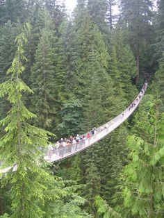 Capilano Suspension Bridge, North Vancouver British Columbia