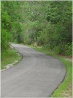 Hugh S. Branyon Backcountry Trail #gulfshores #orangebeach #backcountrytrail #hiking