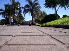 Fotografia tomada en la plaza San Martín con un Contraste de nitidez y difusión. Autor: Kevn Imberti